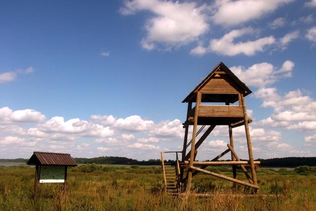 Skatu tornis
